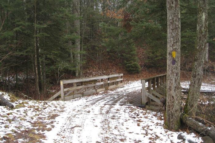 Sheep Ranch Creek Bridge - W20 a