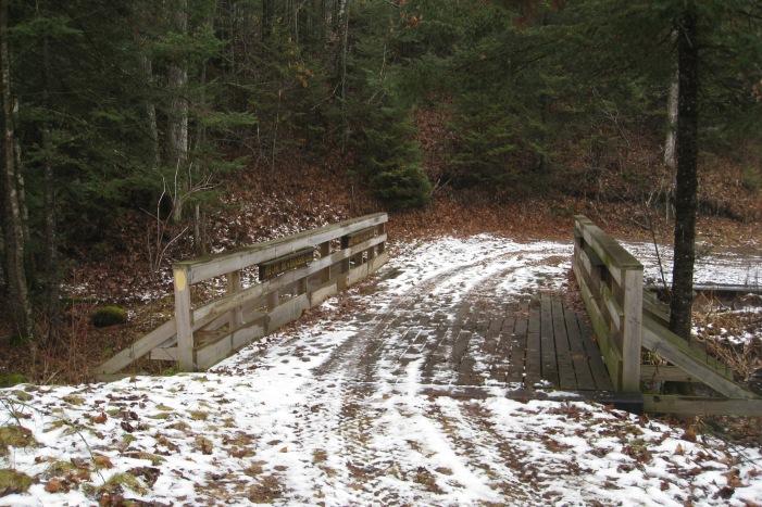 Sheep Ranch Creek Bridge - W21 a